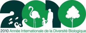 IYB2010_Logo_French