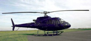 helico pcr