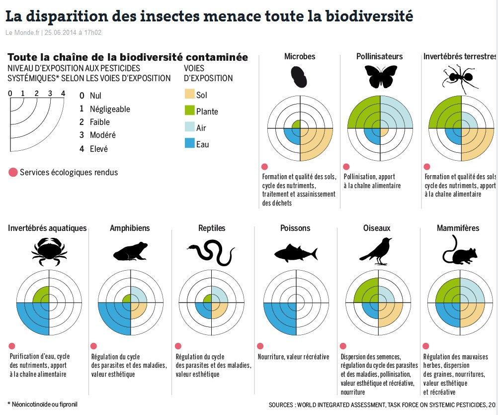 disparition insectes menace biodiversité