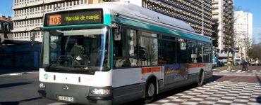 bus-alterite