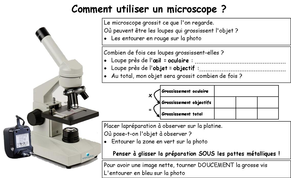 le coin s v t blog archive comment utiliser le microscope. Black Bedroom Furniture Sets. Home Design Ideas