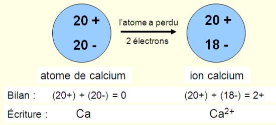 Formation de l'ion calcium